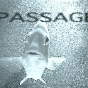 Passage 2001